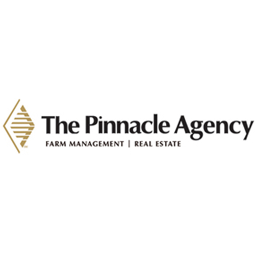 ThePinnacleAgency